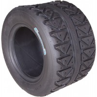 GOLDSPEED MAXXIS 225/40-10 ARGENT